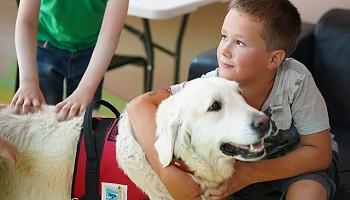 Лечить онкобольных детей помогают собаки