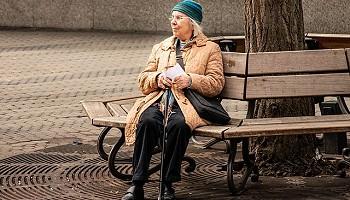 Новосибирский зоопарк возвращает пенсионный возраст