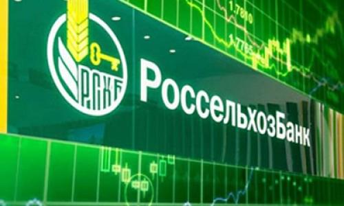 Россельхозбанк увеличил кредитование сезонных работ в Новосибирской области на 34%