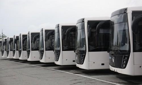 150 новых автобусов позволят расширить маршрутную сеть Новосибирска