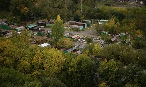 В Новосибирске создадут уникальный для России ландшафтный парк