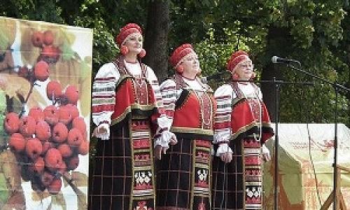 В Новосибирске любителей загородной жизни приглашают отовариться и развлечься