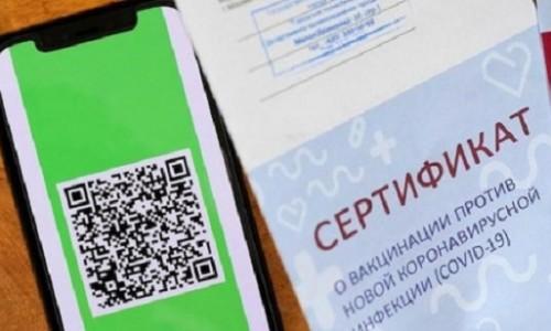 Срок внедрения QR-кодов перенесли в Новосибирске и области