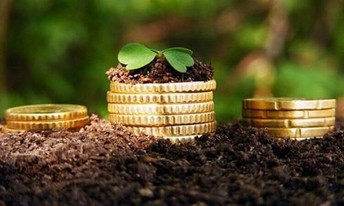 Новосибирский филиал Россельхозбанка в 2017 году выдал 4,7 млрд рублей в рамках программы льготного кредитования АПК