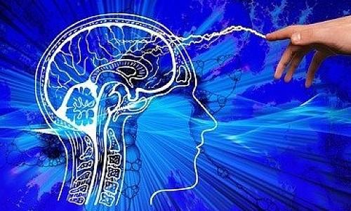 Вживление микрочипов в мозг человека обсуждают в правительстве РФ