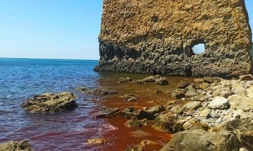 """""""Покраснело Черное море"""". Вода возле Геленджика стала красной"""